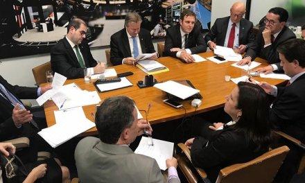 As nuances do amplo apoio dos deputados federais de SC aos temas bolsonaristas